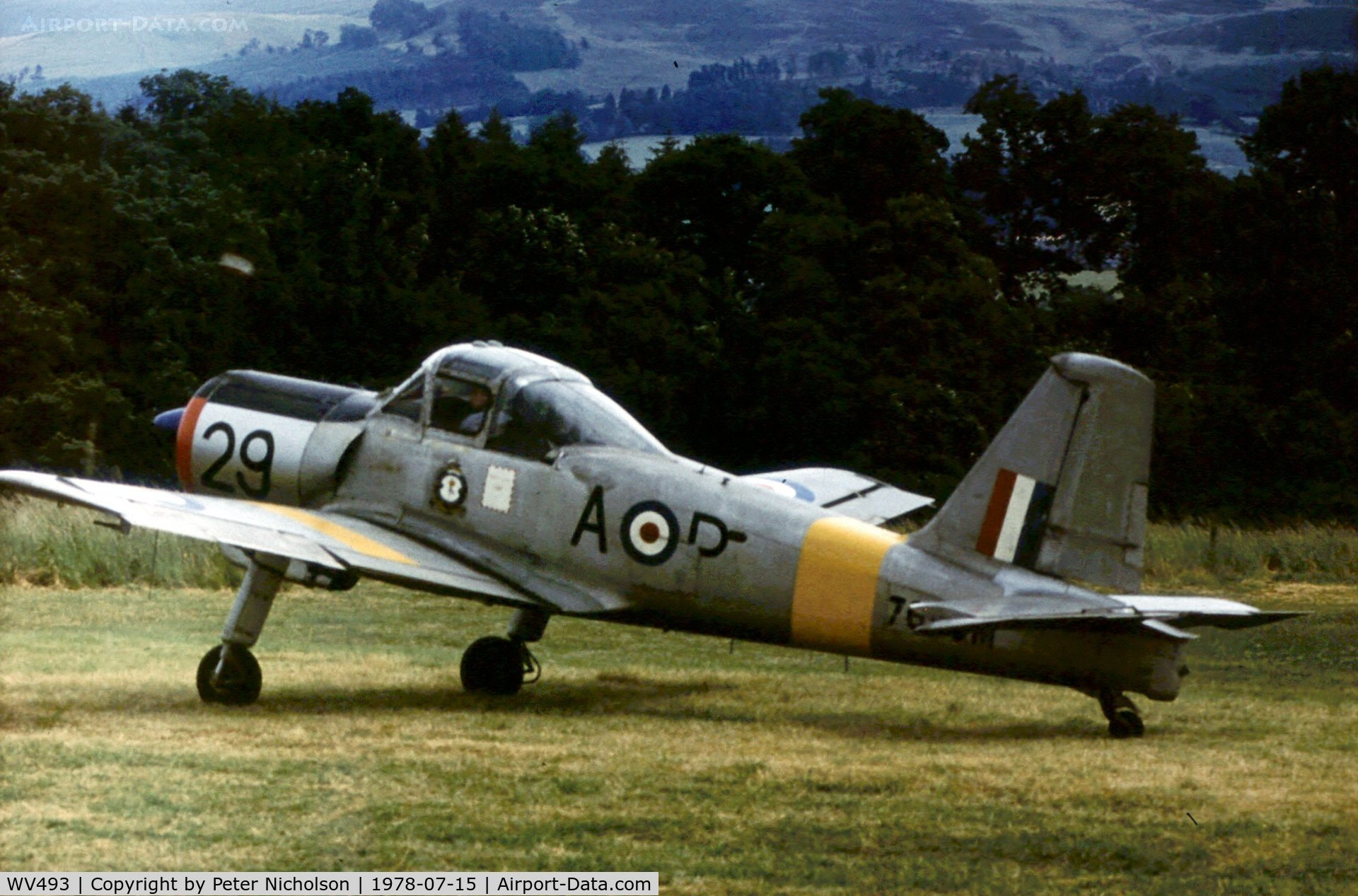 WV493, 1953 Percival P-56 Provost T.1 C/N PAC/56/056, Provost T.1 at the 1978 Strathallan Open Day.