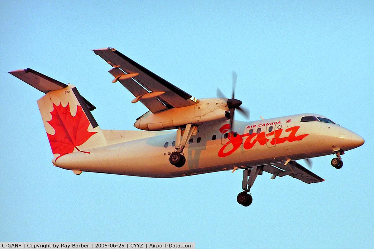 C-GANF, 1986 De Havilland Canada DHC-8-102 Dash 8 C/N 042, De Havilland Canada DHC-8-102 Dash 8 [042] (Air Canada Jazz) Toronto~C 25/06/2005