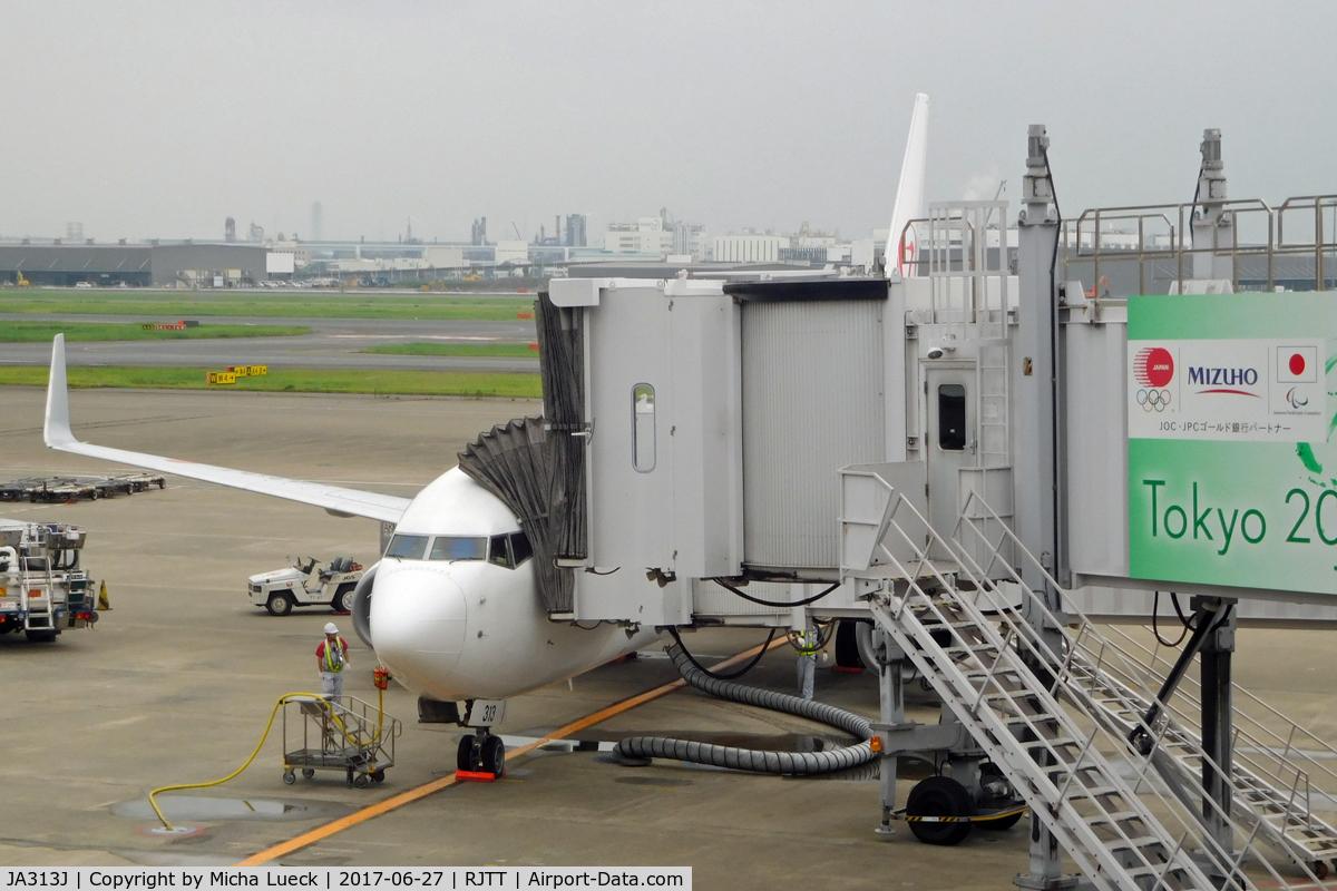 JA313J, 2008 Boeing 737-846 C/N 35342, At Haneda