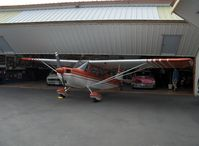 N5038G photo, click to enlarge