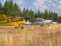 C-GTHY @ S90 - Elk City, Idaho Aug 05 - by Tony Hunt