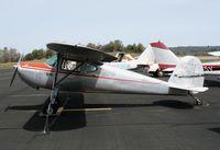 N76284 @ AUN - 1946 Cessna 120 at Auburn Municipal Airport, CA