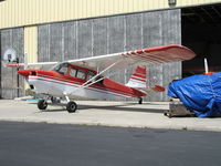 N50568 @ WVI - 1979 Bellanca 7GCBC in late afternoon sun @ Watsonville Municipal Airport, CA