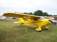 N4612H @ KOSH - Piper PA-17
