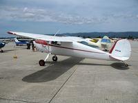 N72548 @ WVI - 1946 Cessna 120 @ Watsonville Municipal Airport, CA