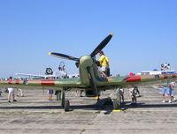 C-FDNL @ YIP - Warbird Airshow