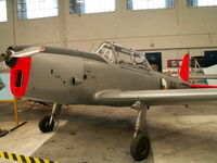 168 - DHC-1/Irish Air Corps Museum/Baldonnel - by Ian Woodcock
