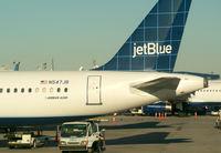 N547JB @ JFK - A Tail De-tail