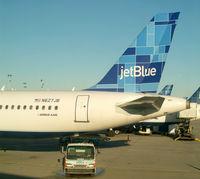 N627JB @ JFK - A Tail De-tail
