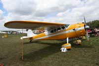 N9866A @ LAL - Cessna 190