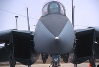 160896 @ CID - F-14A business end up close - by Glenn E. Chatfield