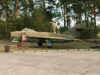 08 - Mikoyan-Gurevich MiG-17F/Finow-Brandenburg - by Ian Woodcock