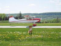 C-FFRP @ CZBA - Landing CZBA - by Tracy Klepsch