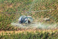 F-BTSX - burgondy vineyard 2001 - by Serge Bonnot