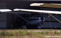 N46390 @ EWN - Sheilded from the glaring sun - by Paul Perry