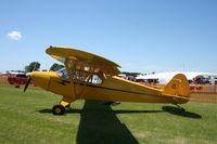 N7595H @ 91C - Piper PA-12 - by Mark Pasqualino