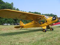 N2875Y - J-3 Cub - Steele Field - by Tom Cooke