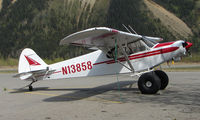 N13858 @ HRR - Piper Pa-18-150 at Healy River - by Terry Fletcher