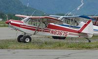 N83675 @ PAQ - Piper Pa-18-150 at Palmer AK
