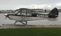 N286AM @ LHD - Aviat Husky  at Lake Hood