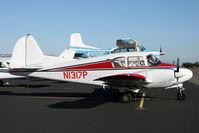 N1317P @ KPAE - Can't resist a classic Piper