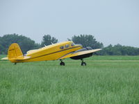 N41759 @ D52 - Bobcat at Geneseo - by Terry L. Swann