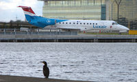 LX-LGL @ EGLC - A lone cormorant watches the Luxair Emb 135 taxi for departure from London City