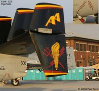 163536 @ LFI - Some artistic details from VAW-125, the Tigertails - by Paul Perry