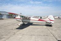 N3448C @ SEF - Cessna 170B
