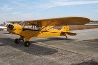 N26950 @ SEF - Piper J3C Cub