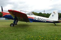 G-BDDD @ EGBP - 1951 DHC-1 Chipmunk 22 at Kemble on Great Vintage Flying Weekend