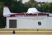 N3206D @ LAL - Cessna 180