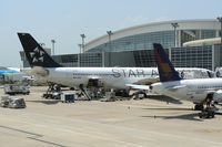 D-AIGC @ DFW - Star Alliance ( Lufthansa ) at the gate - DFW