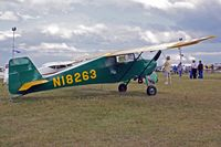 N18263 @ OSH - 2001 BUTTERCUP, c/n: 001X - by Timothy Aanerud