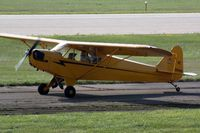 N88456 @ OSH - 1946 Piper J3C-65, c/n: 16079 - by Timothy Aanerud