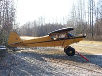 N135WK - A grass strip in Talkeetna - by Christopher Maize