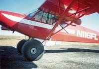 N116FL - Cub - by roundmotor