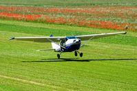 D-EUCI @ LIBF - Landing on the grass - by Virus