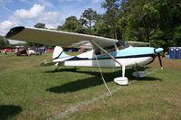 N1981C @ LAL - Cessna 170B
