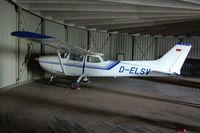 D-ELSV @ EDLP - Inside hangar