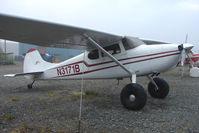 N3171B @ SXQ - 1952 Cessna 170B, c/n: 25413 at Soldotna
