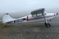 N3198A @ SXQ - 1953 Cessna 170B, c/n: 25842