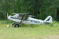N78831 - 1947 Piper PA-11, c/n: 11-1605 at the old gravel strip in the centre of Talkeetna town