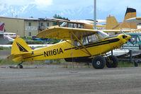 N1161A @ LHD - 1951 Piper PA-18-135, c/n: 18-2691 at Lake Hood