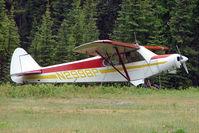 N2998P @ 70AK - 1955 Piper PA-18-150, c/n: 18-4514