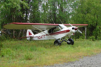 N247T @ L85 - Piper PA-18-105 SPECIAL, c/n: 18-2361 landstrip near Mackey Lake Soldotna