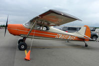 N75875 @ LHD - Cessna 170A, c/n: 18877 at Lake Hood