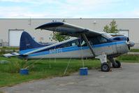 N103TE @ LHD - 1960 Dehavilland DHC-2 MK. I(L20A), c/n: 1441 at Lake Hood
