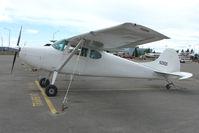 N2562D @ LHD - 1952 Cessna 170B, c/n: 20714 at Lake Hood
