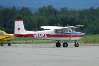N5616A @ PAAQ - 1956 Cessna 172, c/n: 28216 at Palmer